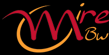 developgroup-logo-mire-bw